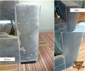 Upholstery-Cleaning-Animal-Stain-removal-Couch